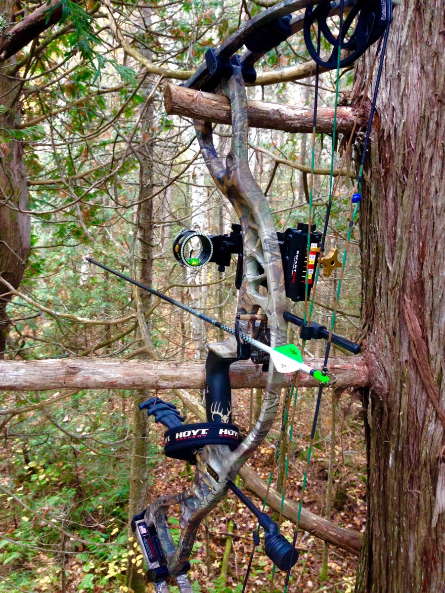 Choosing a Bow and Arrow Setup: My Current Gear